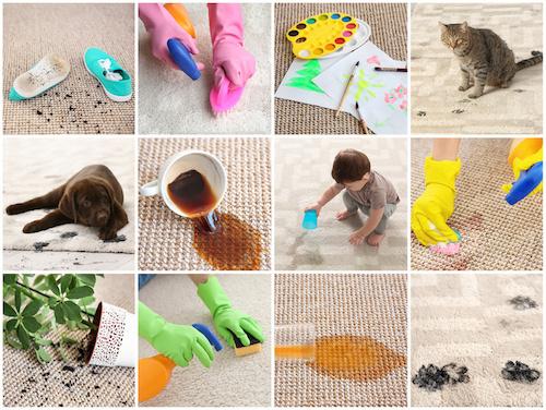 beispiele für schmutzige teppiche teppichreinigung nürnberg teppiche billig und schnell https.//fensterputzernürnberg.de